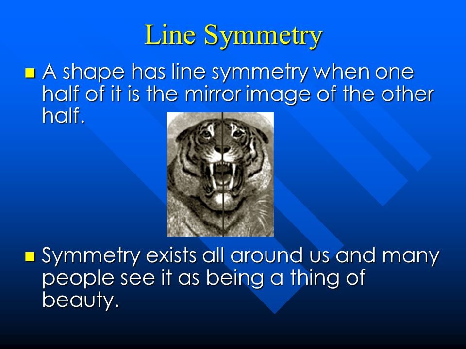 Line Symmetry A shape has line symmetry when one half of it is the mirror image of the other half. A shape has line symmetry when one half of it is th