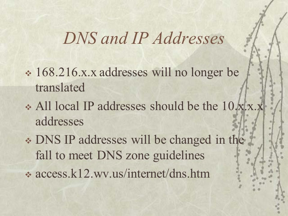 DNS and IP Addresses 168.216.x.x addresses will no longer be translated All local IP addresses should be the 10.x.x.x addresses DNS IP addresses will be changed in the fall to meet DNS zone guidelines access.k12.wv.us/internet/dns.htm