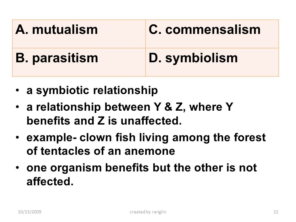 a symbiotic relationship a relationship between Y & Z, where Y benefits and Z is unaffected. example- clown fish living among the forest of tentacles