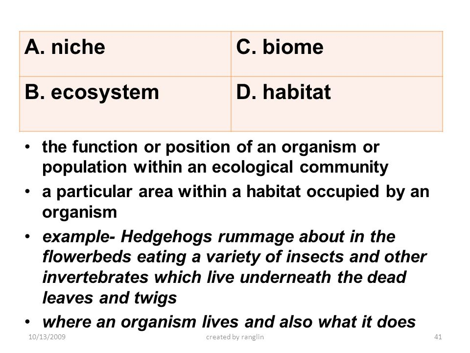 the function or position of an organism or population within an ecological community a particular area within a habitat occupied by an organism exampl