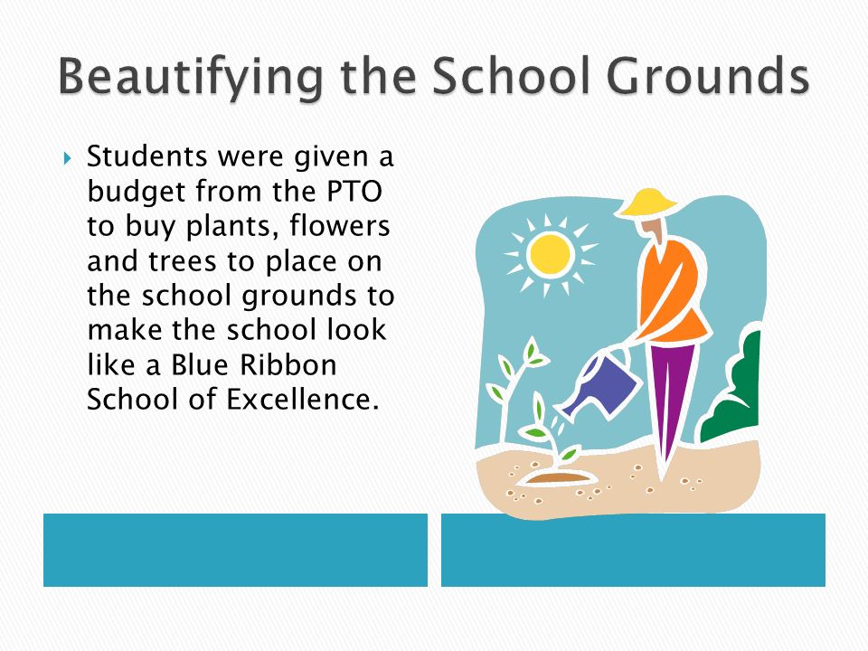 Students were given a budget from the PTO to buy plants, flowers and trees to place on the school grounds to make the school look like a Blue Ribbon School of Excellence.