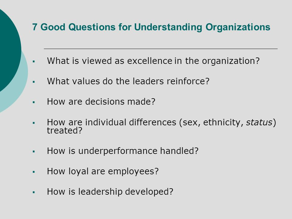 7 Good Questions for Understanding Organizations What is viewed as excellence in the organization.