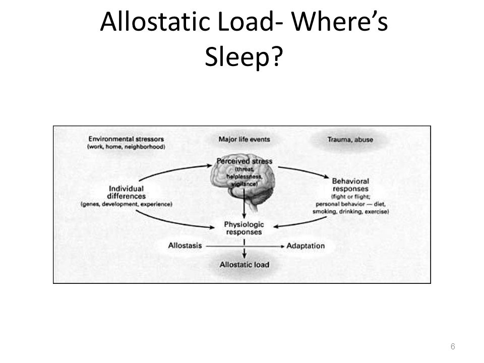 Allostatic Load- Wheres Sleep 6