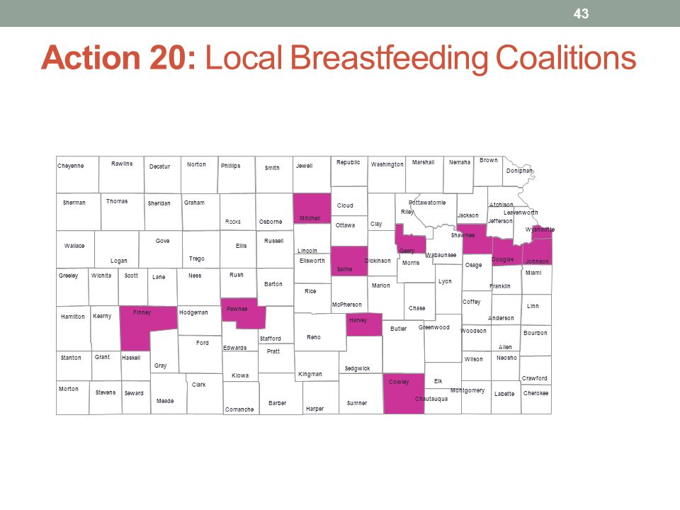 Action 20: Local Breastfeeding Coalitions 43 Lyon Logan Linn Lincoln Leavenworth Lane Labette Wyandotte Kiowa Woodson Kingman Wilson Kearny Wichita Johnson Washington Jewell Wallace Jefferson Wabaunsee Jackson Trego Hodgeman Thomas Haskell Sumner Harvey Stevens Stanton Hamilton Stafford Greenwood Smith Greeley Sherman Gray Sheridan Grant Shawnee Graham Seward Gove Sedgwick Geary Scott Franklin Saline Ford Russell Finney Rush Ellsworth Rooks Ellis Riley Elk Rice Edwards Republic Douglas Reno Doniphan Rawlins Dickinson Pratt Decatur Pottawatomie Crawford Phillips Cowley Pawnee Comanche Ottawa Coffey Osborne Cloud Osage Clay Norton Clark Ness Cheyenne Neosho Cherokee Nemaha Chautauqua Morton Chase Morris Butler Montgomery Brown Mitchell Bourbon Miami Barton Meade Barber McPherson Atchison Marshall Anderson Marion Allen Harper
