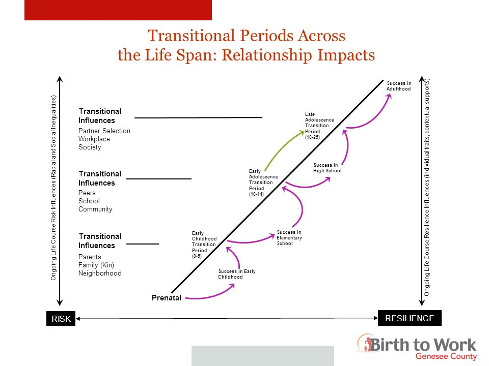 Transitional Periods Across the Life Span: Relationship Impacts Prenatal Transitional Influences Partner Selection Workplace Society Peers School Comm