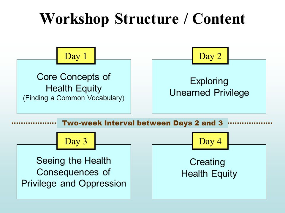 Workshop Structure / Content Core Concepts of Health Equity (Finding a Common Vocabulary) Exploring Unearned Privilege Day 1Day 2 Seeing the Health Consequences of Privilege and Oppression Creating Health Equity Day 3Day 4 Two-week Interval between Days 2 and 3
