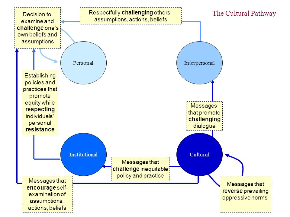 Decision to examine and challenge ones own beliefs and assumptions Respectfully challenging others assumptions, actions, beliefs Establishing policies and practices that promote equity while respecting individuals personal resistance Messages that reverse prevailing oppressive norms Messages that promote challenging dialogue Messages that challenge inequitable policy and practice Messages that encourage self- examination of assumptions, actions, beliefs PersonalInterpersonal InstitutionalCultural The Cultural Pathway