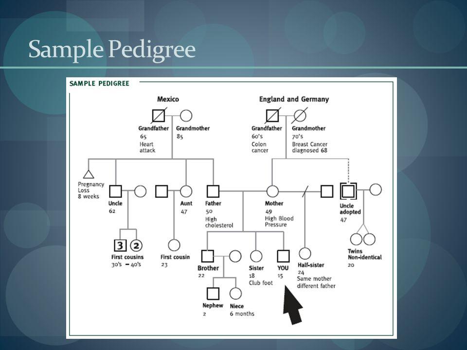 Sample Pedigree