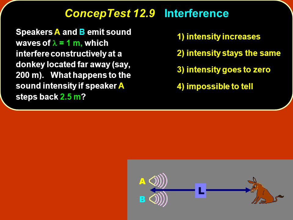 Speakers A and B emit sound waves of = 1 m, which interfere constructively at a donkey located far away (say, 200 m). What happens to the sound intens