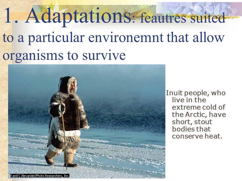 Evolution Evidence: 1. Adaptations 2. Fossils 3. Comparative anatomy 4. Comparative embryology 5. Comparative Biochemistry 6. Plate Techtonics
