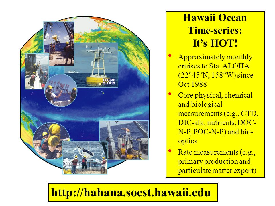 Episode Ideas Scientific Method – how its applied in oceanography Food Web Oceanographers in the Field Hawaii Ocean Time-series Three part series about global warming –How its affecting the ocean –How oceanographers study this –Answers they are finding SEA-IT-LIVE