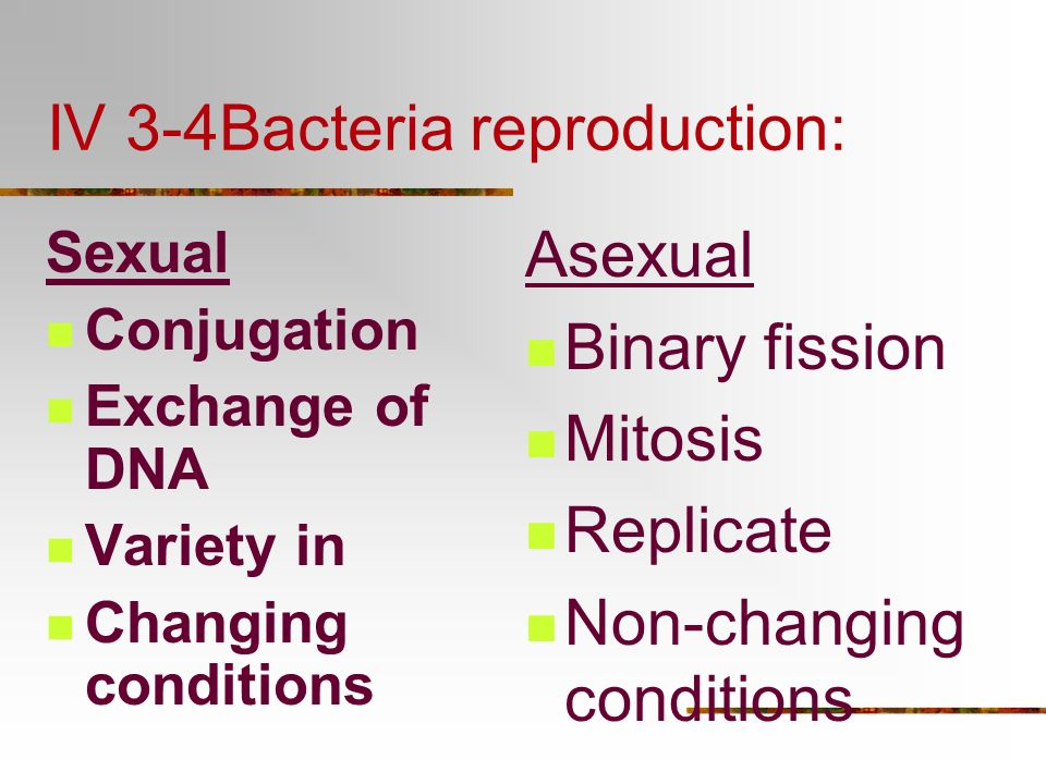 Tuberculosis: Bacterial infection
