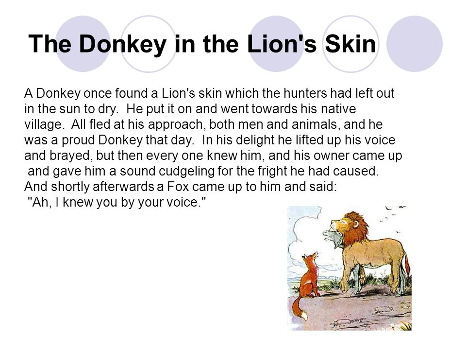 The Donkey in the Lion's Skin A Donkey once found a Lion's skin which the hunters had left out in the sun to dry. He put it on and went towards his na