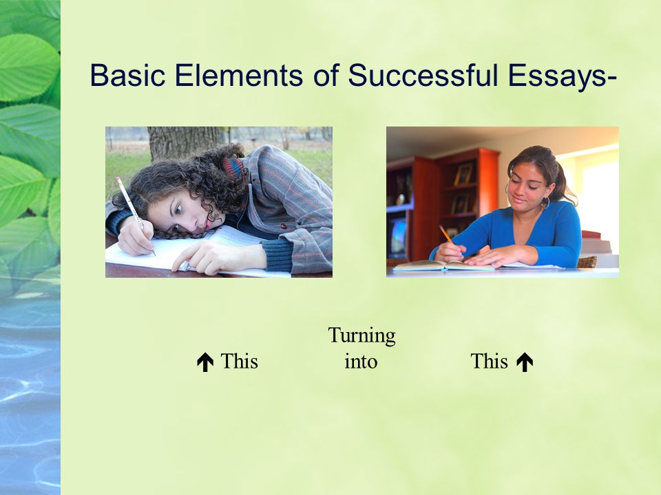 Basic Elements of Successful Essays- Turning This into This