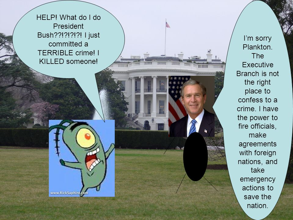 HELP. What do I do President Bush ! ! ! . I just committed a TERRIBLE crime.