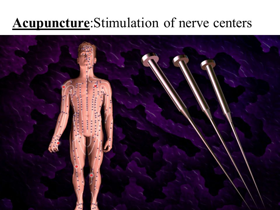 IB.What is the function of the nervous system? To receive information from a sensory neuron To process info. by the brain & spinal cord To respond by