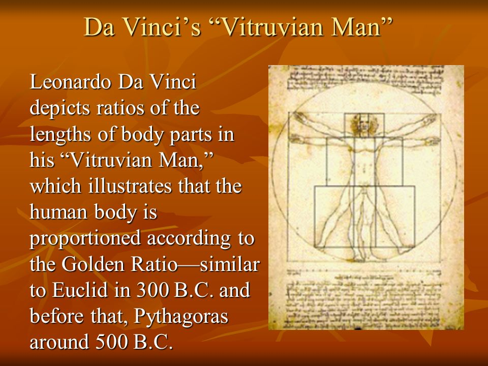 Da Vincis Vitruvian Man Leonardo Da Vinci depicts ratios of the lengths of body parts in his Vitruvian Man, which illustrates that the human body is p