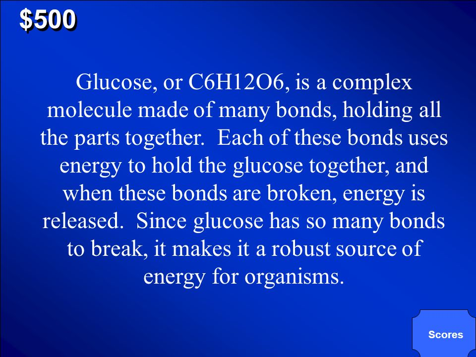 © Mark E. Damon - All Rights Reserved $500 Why use glucose to make energy?