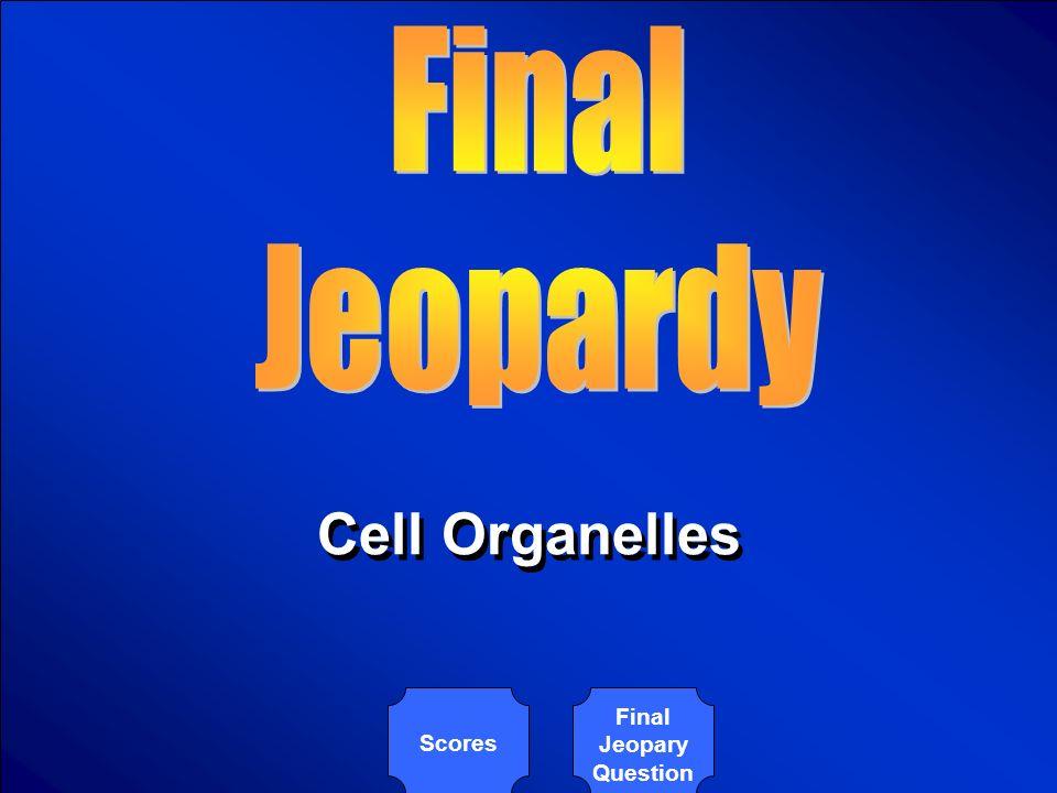 © Mark E. Damon - All Rights Reserved $500 Body organ system Organ Tissue Cells organelles Body organ system Organ Tissue Cells organelles Scores