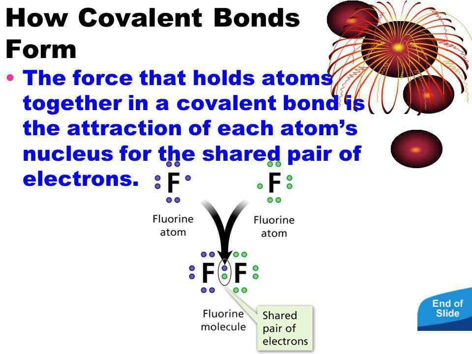 How Covalent Bonds Form The force that holds atoms together in a covalent bond is the attraction of each atoms nucleus for the shared pair of electron
