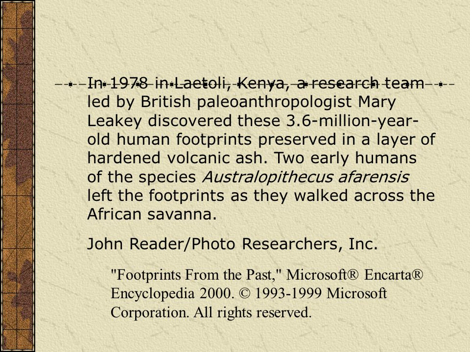 In 1978 in Laetoli, Kenya, a research team led by British paleoanthropologist Mary Leakey discovered these 3.6-million-year- old human footprints preserved in a layer of hardened volcanic ash.