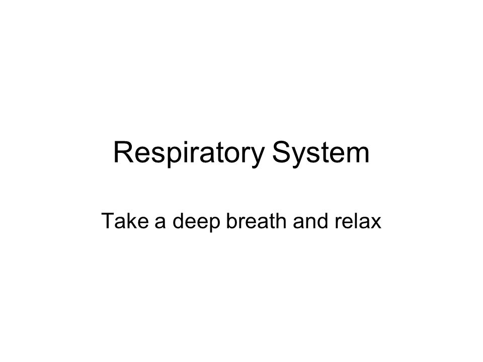 Respiratory System Take a deep breath and relax