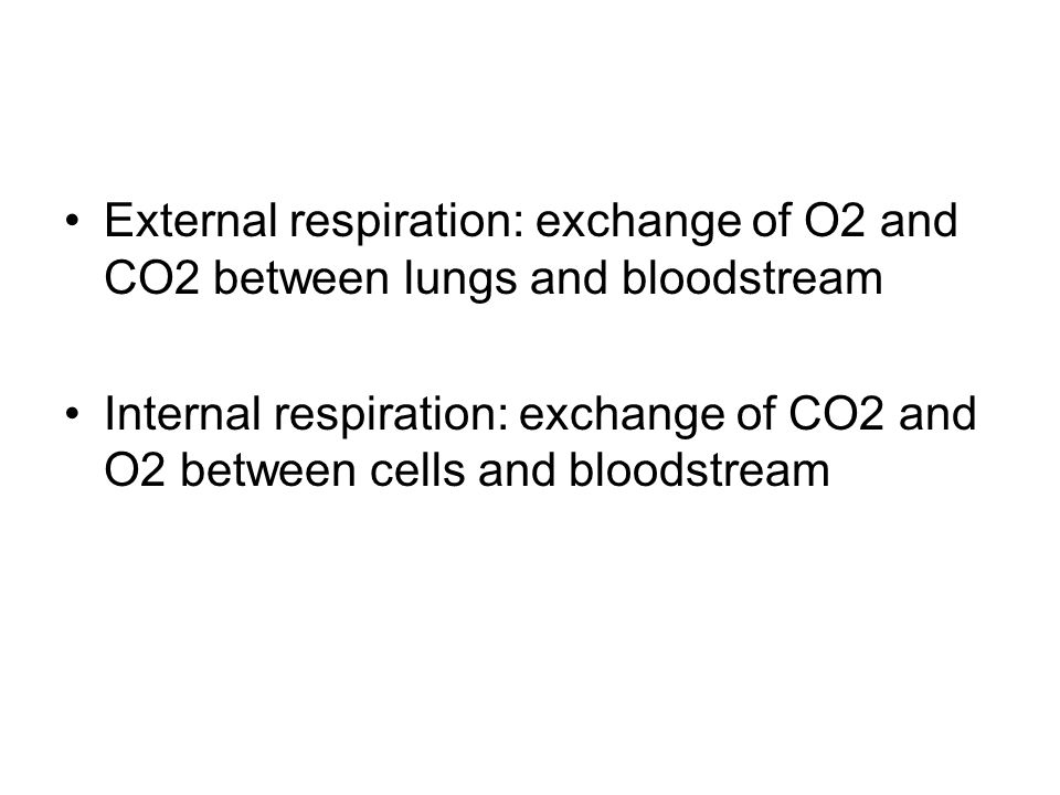 External respiration: exchange of O2 and CO2 between lungs and bloodstream Internal respiration: exchange of CO2 and O2 between cells and bloodstream