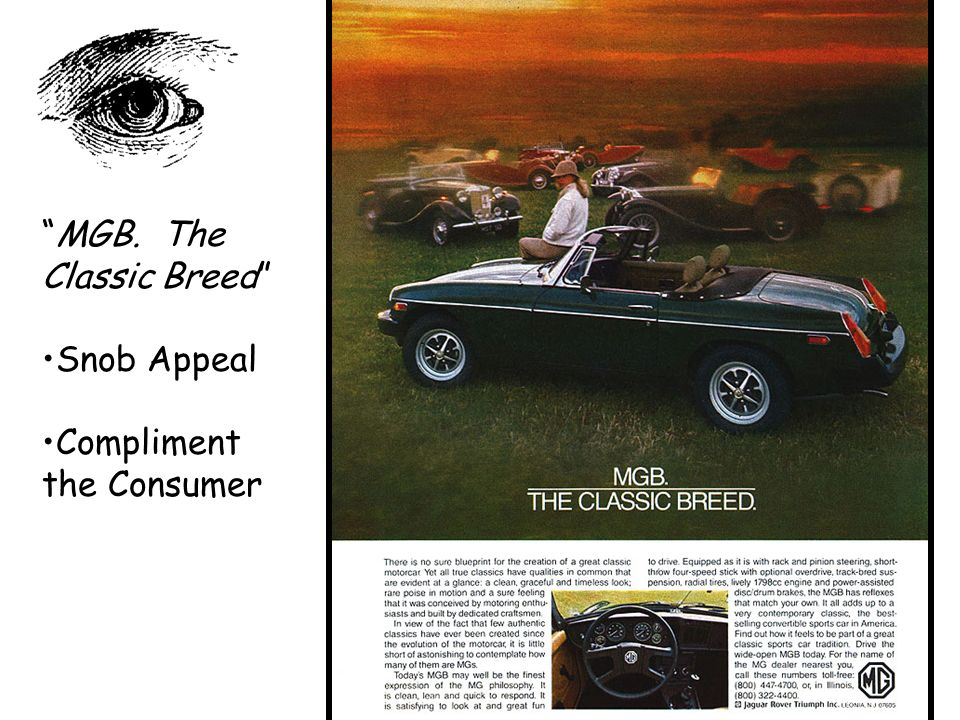 MGB. The Classic Breed Snob Appeal Compliment the Consumer