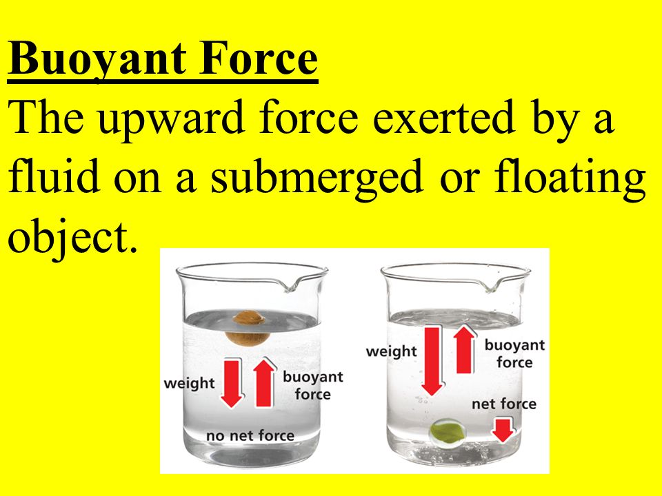 Buoyant Force The upward force exerted by a fluid on a submerged or floating object.