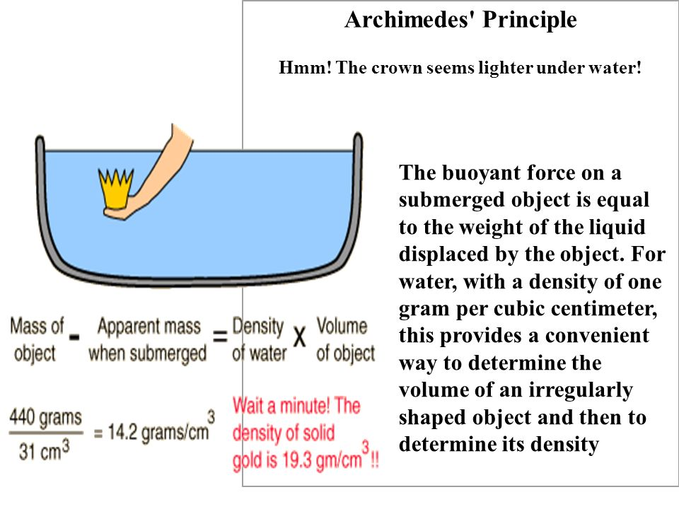 Archimedes' Principle Hmm! The crown seems lighter under water! The buoyant force on a submerged object is equal to the weight of the liquid displaced