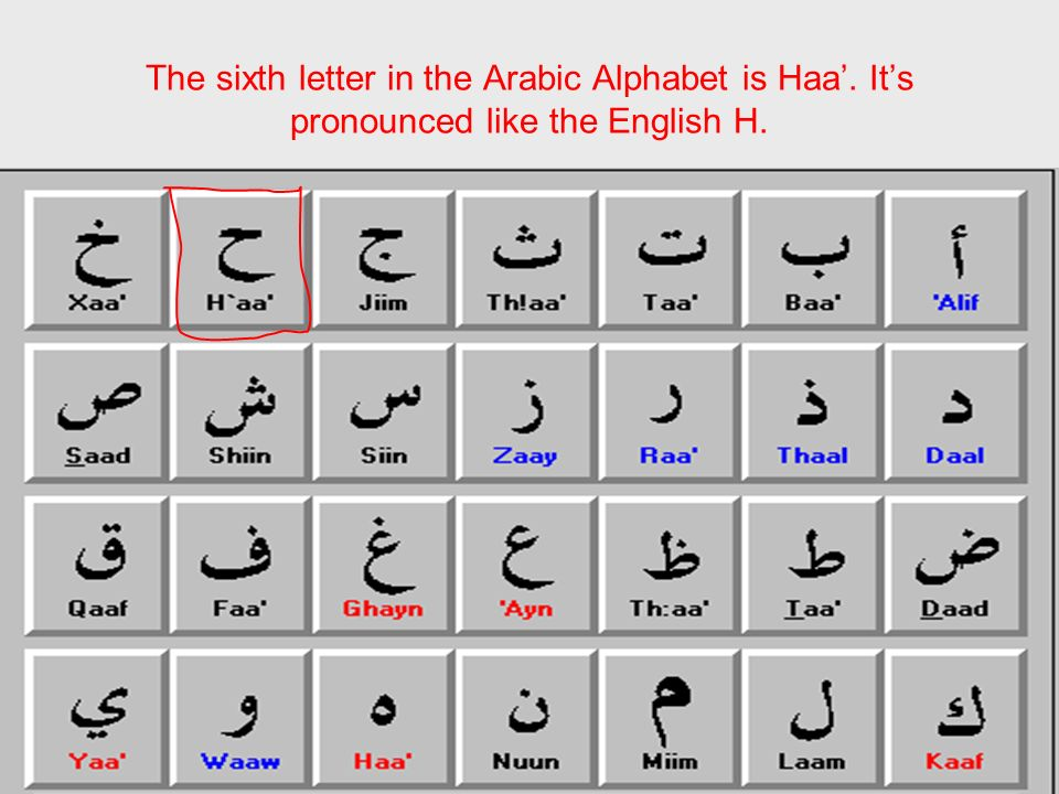 The sixth letter in the Arabic Alphabet is Haa. Its pronounced like the English H.