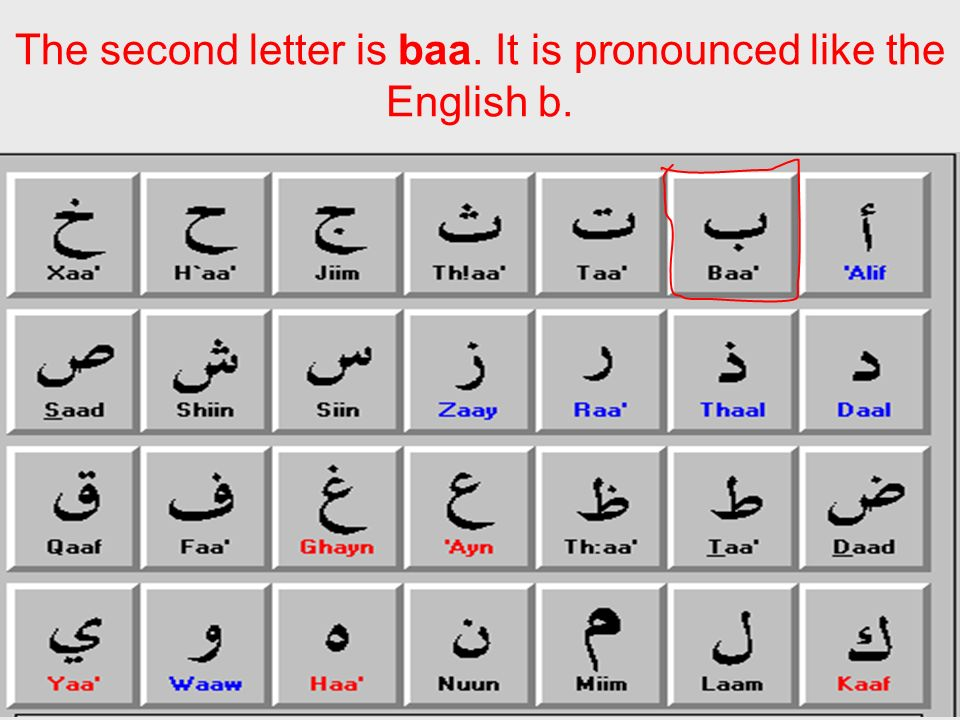 The second letter is baa. It is pronounced like the English b.