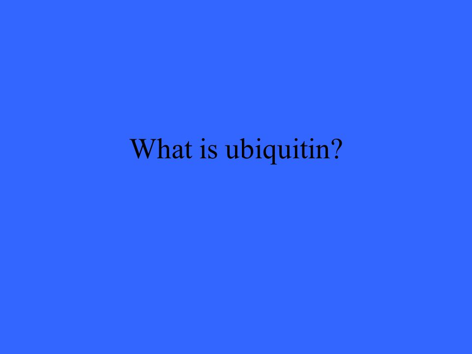 What is ubiquitin?