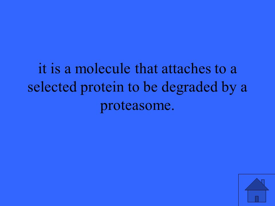 it is a molecule that attaches to a selected protein to be degraded by a proteasome.
