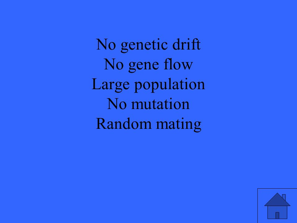 No genetic drift No gene flow Large population No mutation Random mating