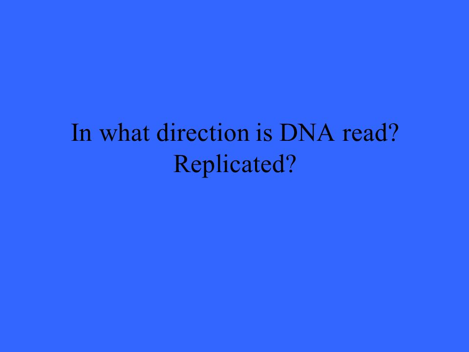 In what direction is DNA read? Replicated?