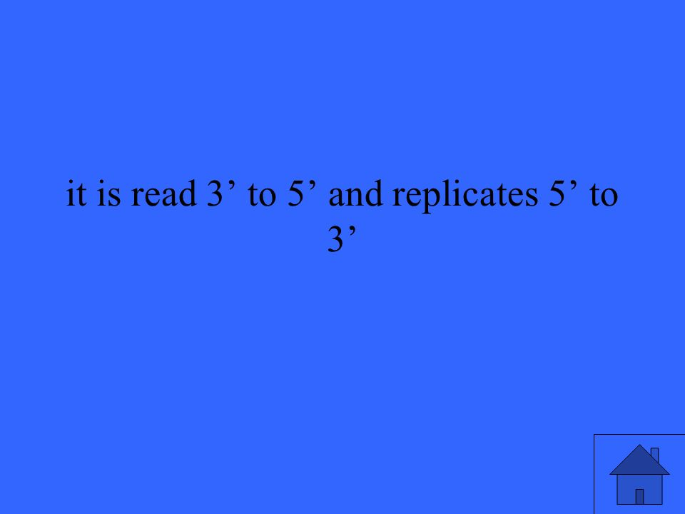 it is read 3 to 5 and replicates 5 to 3