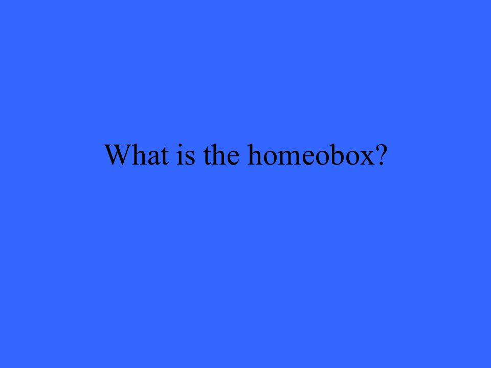 What is the homeobox?