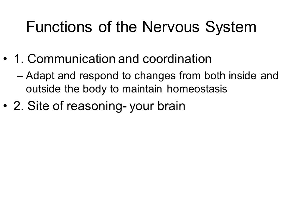Basic structural unit: the neuron How does a neuron function.