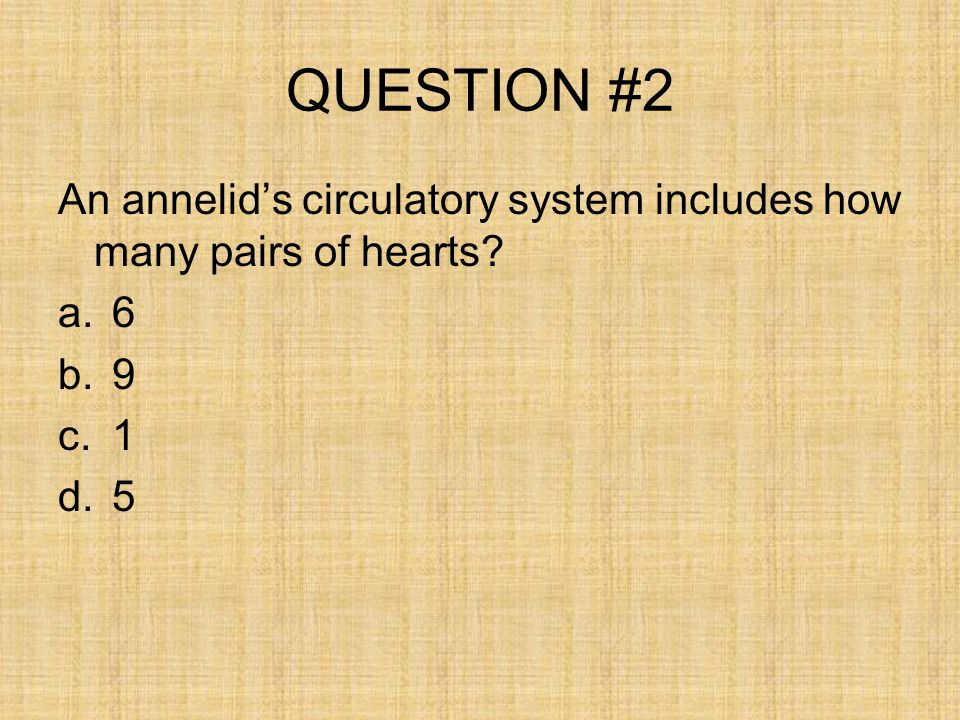 QUESTION #2 An annelids circulatory system includes how many pairs of hearts? a.6 b.9 c.1 d.5