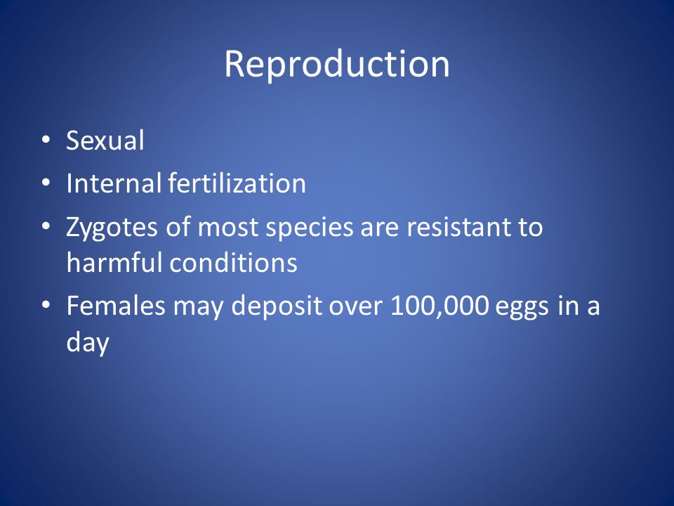 Reproduction Sexual Internal fertilization Zygotes of most species are resistant to harmful conditions Females may deposit over 100,000 eggs in a day