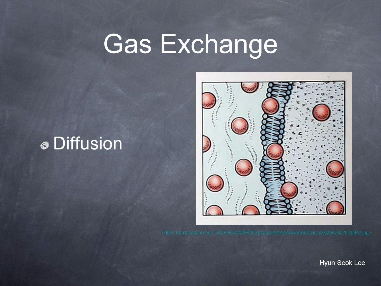 Gas Exchange Diffusion Hyun Seok Lee