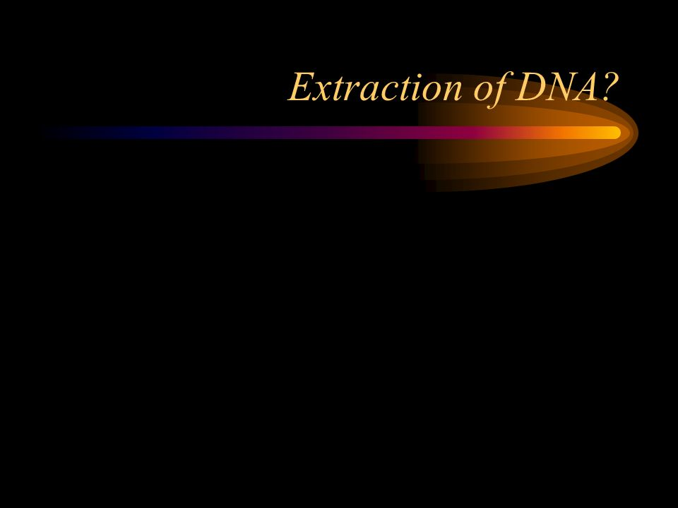 Extraction of DNA?
