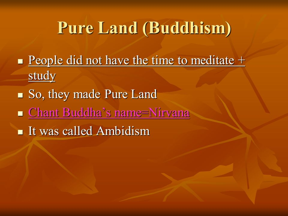 Pure Land (Buddhism) People did not have the time to meditate + study People did not have the time to meditate + study So, they made Pure Land So, they made Pure Land Chant Buddhas name=Nirvana Chant Buddhas name=Nirvana It was called Ambidism It was called Ambidism