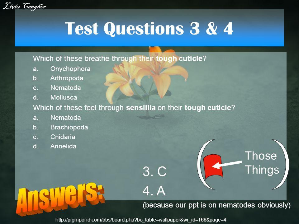 Test Questions 3 & 4 Which of these breathe through their tough cuticle? a.Onychophora b.Arthropoda c.Nematoda d.Mollusca Which of these feel through
