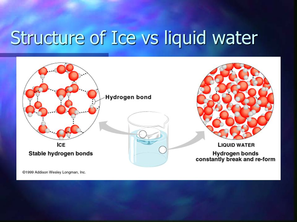 Expansion upon freezing Because of Hydrogen bonding … Because of Hydrogen bonding … 0° C Ice is less dense than liquid water 0° C Ice is less dense th
