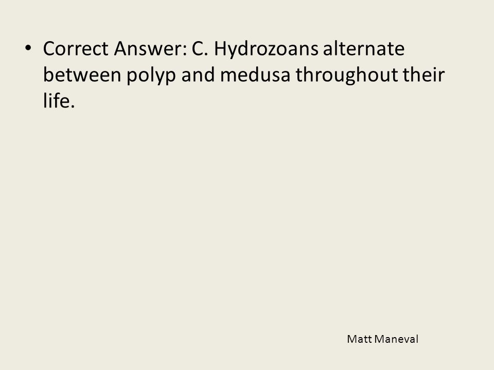 Correct Answer: C. Hydrozoans alternate between polyp and medusa throughout their life. Matt Maneval