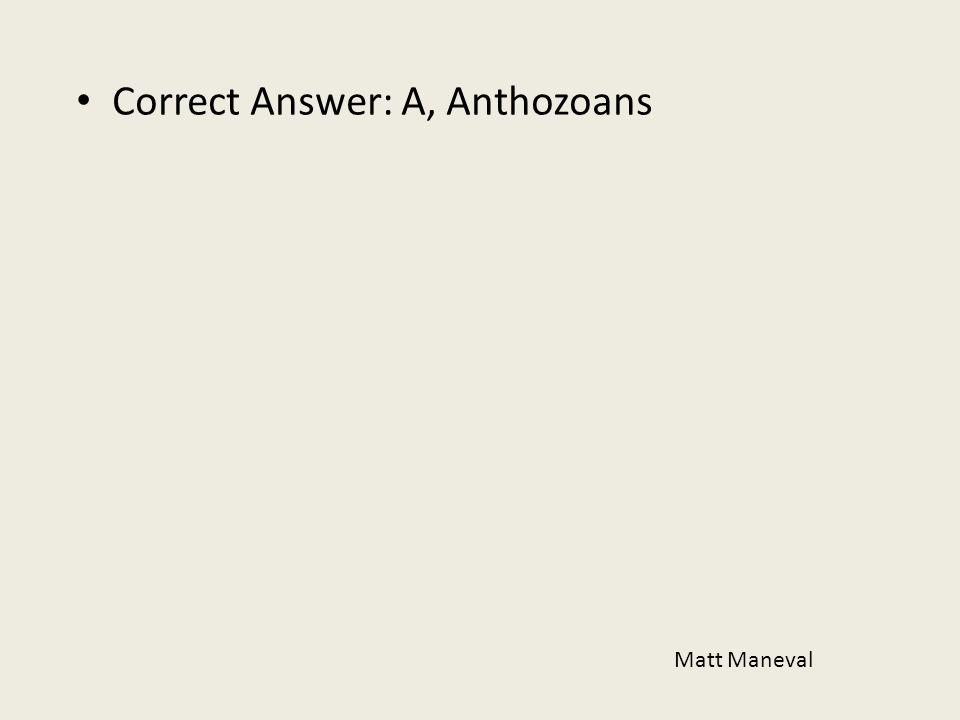 Correct Answer: A, Anthozoans Matt Maneval