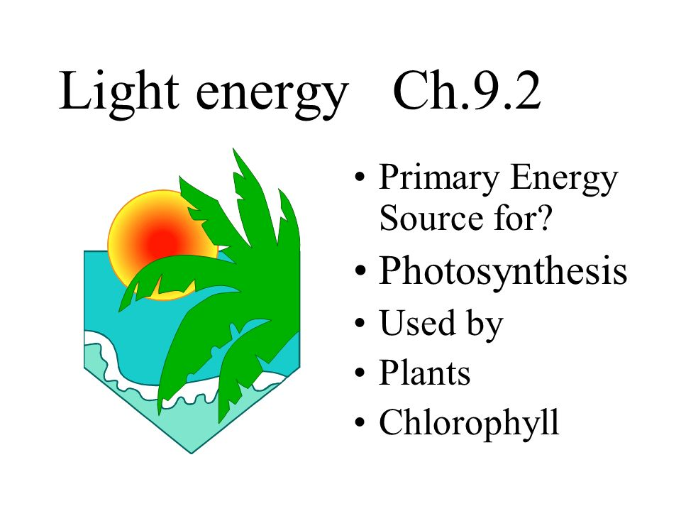 Light energy Ch.9.2 Primary Energy Source for? Photosynthesis Used by Plants Chlorophyll