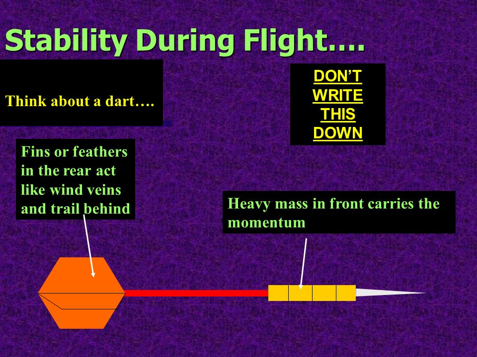 Stability During Flight…. Think about a dart…. Fins or feathers in the rear act like wind veins and trail behind Heavy mass in front carries the momen